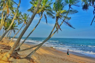 Hills and Beach Tour with Colombo Shopping - 6 Nights 7 Days