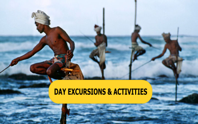 Day Excursions & Activities